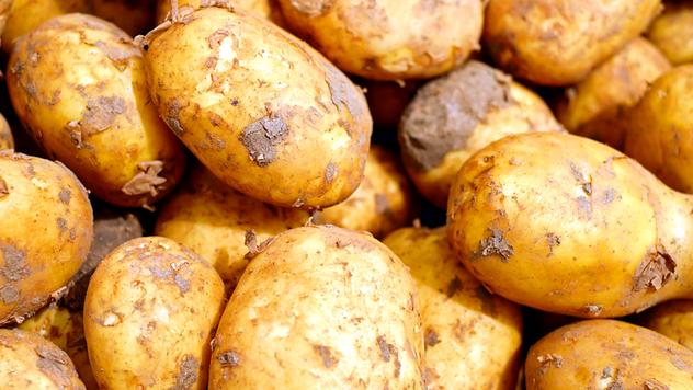 Mesečni pregled cena povrća za septembar - © Pixabay