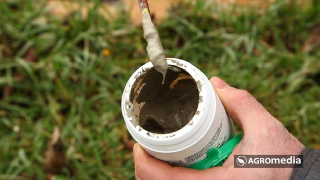 Balzam za zaštitu bilja © Agromedia