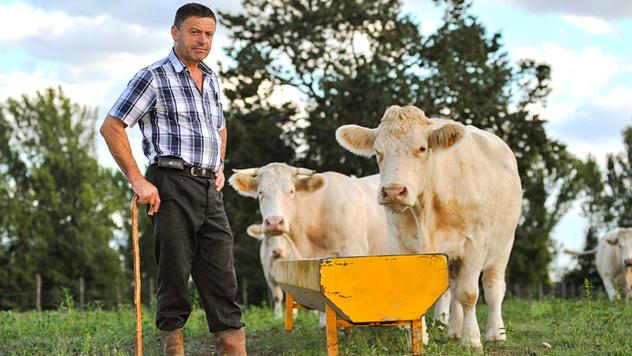 Tradicionalno upravljanje farmom ©Pexels