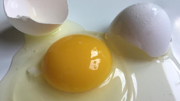 Ilustracija: Jaja kao izvor energije - © Pixabay