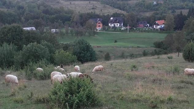 Selo © Miroslav Mašić