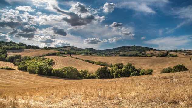 Poljoprivreda @ Pixabay