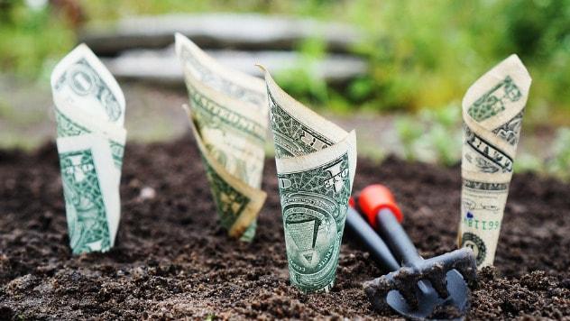 600 miliona za agrarne kredite - ©Pixabay