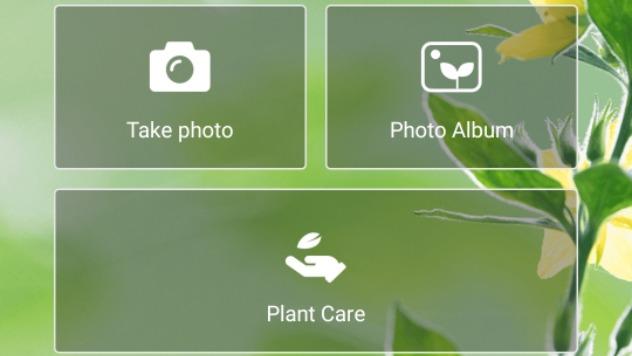 Plantix App © Screenshot