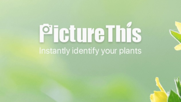Plantix  © Screenshot
