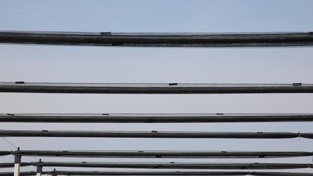 Protivgradna mreža - © Agromedia