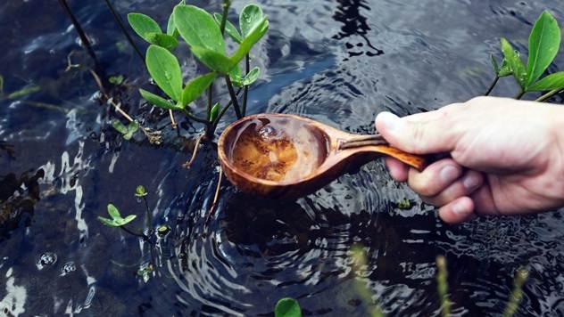 Zalivanje biljaka tokom letnjih meseci - © Pixabay