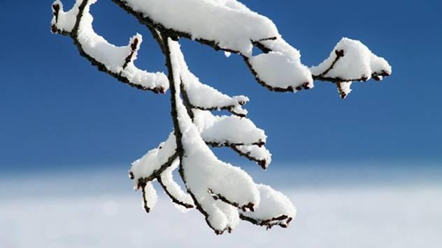 Budućnosti poljoprivrede leži u količini pijaće vode u snegu - © Pixabay