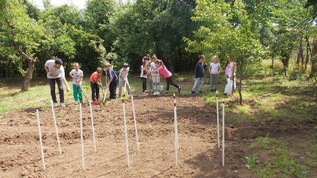 Najmlađi volonteri pripremaju organsku baštu - ©Milan Stoiljković