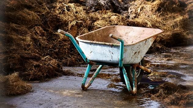 Đubrite pravilno i pametno - Obezbedite visoke prinose i sačuvajte zemljište - © Pixabay