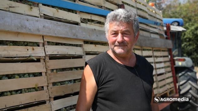 Dragoljub Milovanović © Agromedia