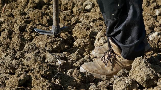 Zemljoradnici primaju manje od najmanje penzije - © Pixabay