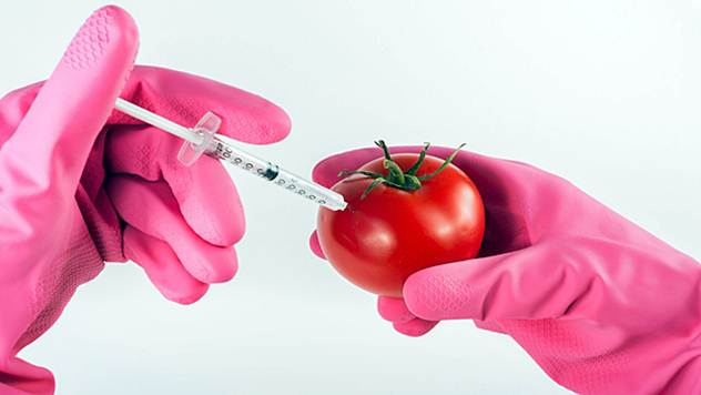 GMO hrana - © Pixabay