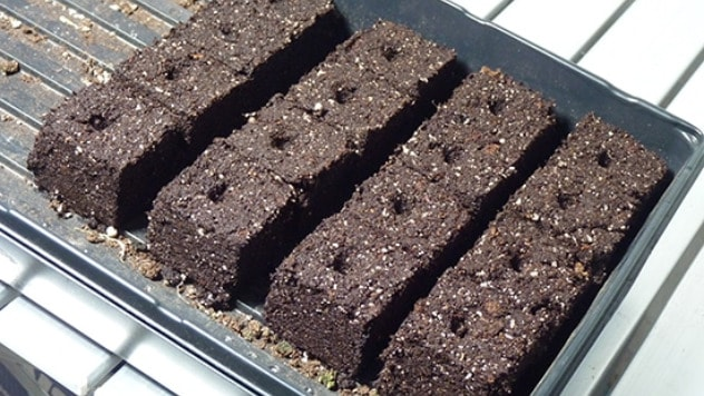Hranljive kocke za rasad - ©Grow a Good Life