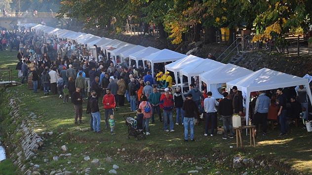 Festival duvan čvaraka © Dejan Davidović/Agromedia