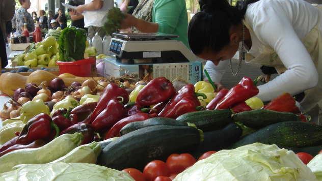 Tezge sa organskim voćem i povrćem