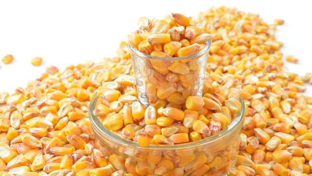 Zrna kukuruza - ©Pixabay