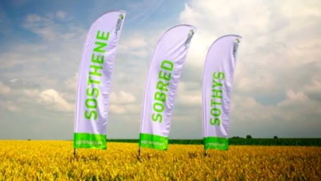 Nove sorte pšenice - trpe velike doze đubrenja  - © Agromedia