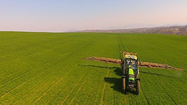 Zaštita mlade pšenice  - ©Agromedia