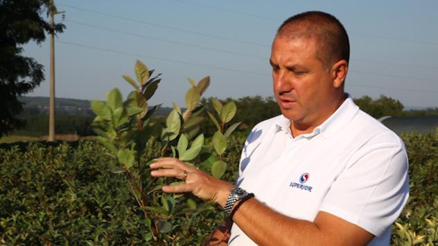 Nebojša Đinović iz kompanije Superior govori o aroniji - ©Agromedia