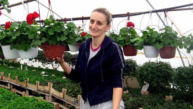 Gazdinstvo Tošić © Foto: Biljana Nenković