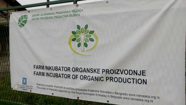Farm inkubator u Selenči © Foto: Ljiljana Pavlović