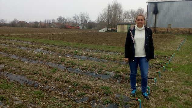 Libuška Fačara, profesorka u Poljoprivrednoj školi u Baču - © Foto: Ljiljana Pavlović
