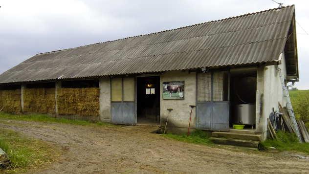 Štala na farmi Trišića - © Foto: Dejan Davidović