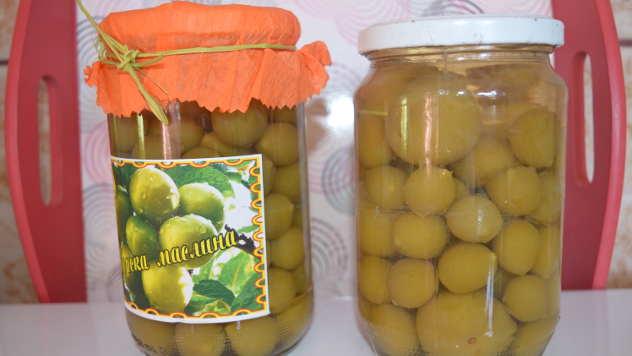 Masline - © Foto: Gordana Simonović Veljković