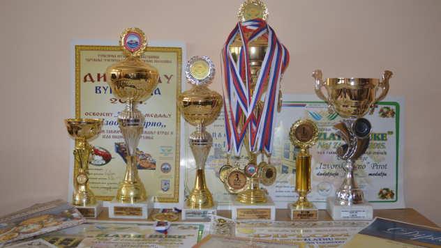 Pehari, medalje i diplome udruženja Izvorsko zrno - © Foto: Gordana Simonović Veljković