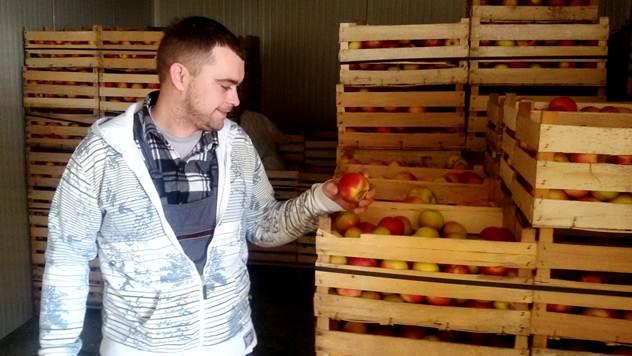 Proizvođač jabuka - © Julijana Kuzmić