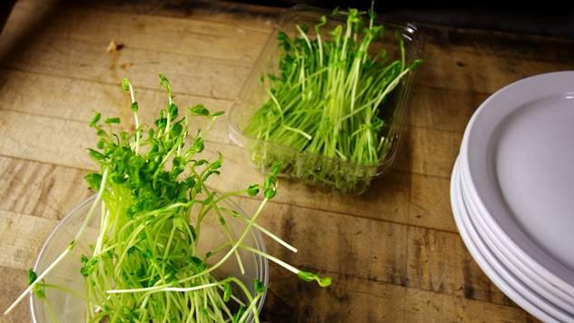 Mikropovrće sve popularnije za gajenje - © Pixabay