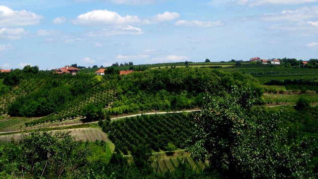 Panorama sela - © Foto: Biljana Nenković
