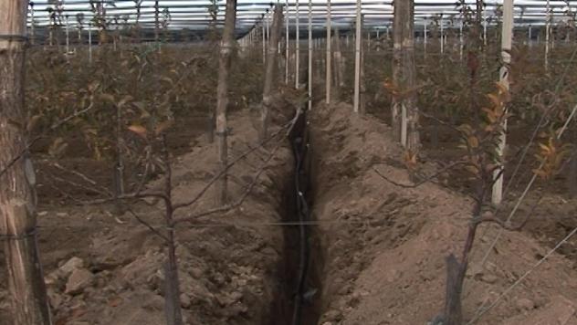 Kopanje bunara u Slankamenu - ©Agromedia