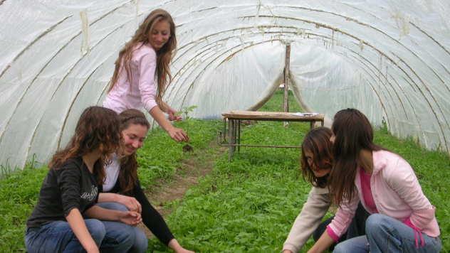 Rad u plasteniku - © Foto: arhiva Poljoprivredno-hemijske škole Kraljevo