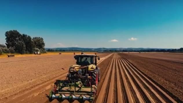 Proizvodnja šargarepe: Najnovije tehnologije za uštedu vremena i novca - © Agromedia