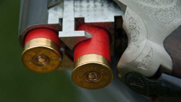 Preklopljeno oružje - © Foto: www.pixabay.com