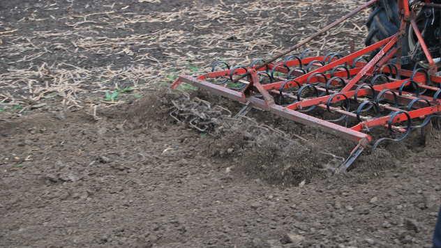 Dodeljena priznanja manifestacijama koje promovišu poljoprivrednu proizvodnju  - © Agromedia