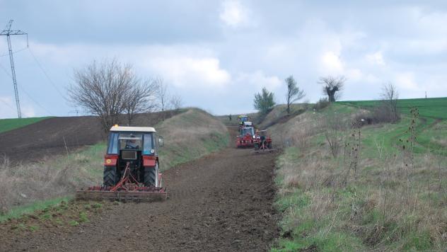 Traktori u njivi- ©Agromedia
