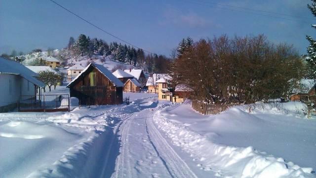 Na Rudnu pola metra snega i stotinu gostiju - © Milanko Danilović / Agromedia