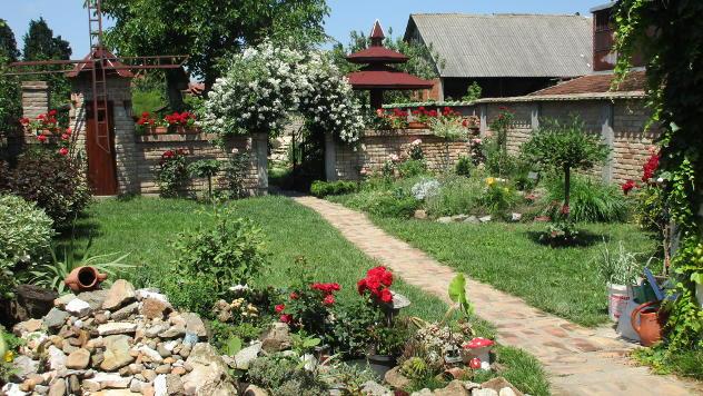 Najlepša bašta u severnom Banatu © Foto: Dragana Starčević