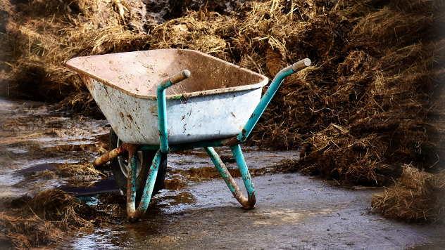 Potrebno je više stajskog i mineralnog đubriva - © Foto: www.pixabay.com