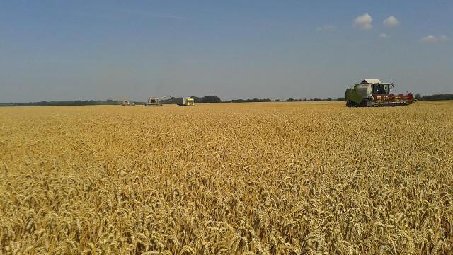Udruživanje poljoprivrednika od ključnog značaja - © Agromedia