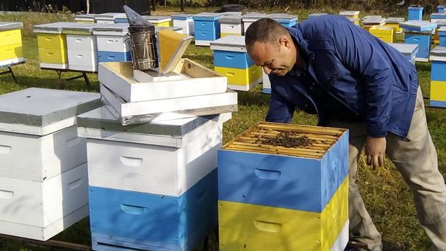 Ljubav prema pčelarstvu rodila se na fakultetu - © Dejan Davidović/Agromedia