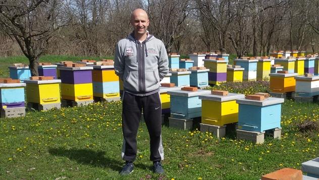 Igor Stanković u svom pčelinjaku - © Julijana Kuzmić
