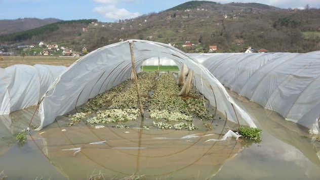 Poplave - Zapadna Morava © Foto: Milosav Đokić