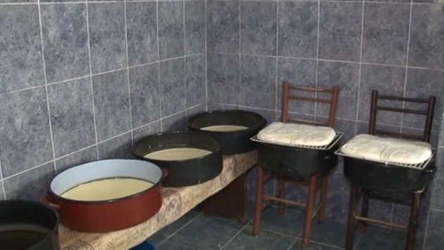 Proizvodnja sira - © Foto: Desimir Todorović