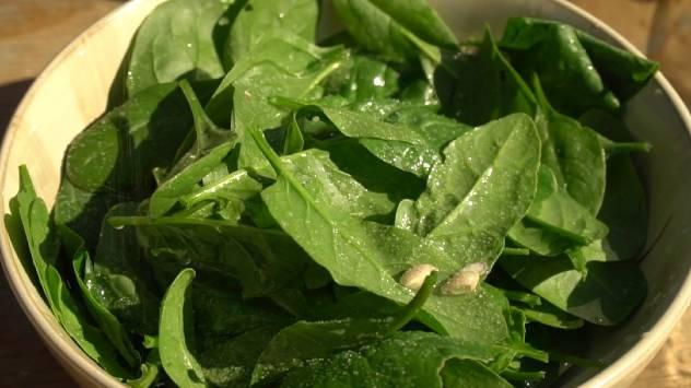 Sveži mladi listovi spanaća: Izvanredan izvor ukusa i vitamina  - © Agromedia
