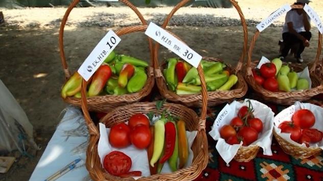 Superior paprika i paradajz