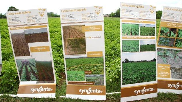 Dani polja krompira, Syngenta - ©Agromedia
